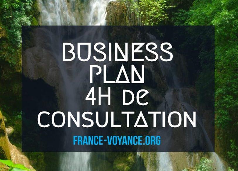 Business plan consultation e1604773437452