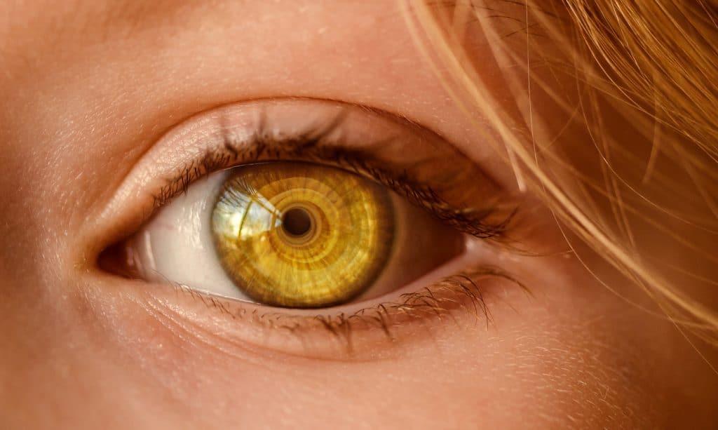 Le Bar à Voyance - L'œil, les yeux...